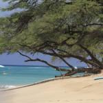 Девствени плажове
