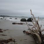 плаж - Moreaki boulders NZ